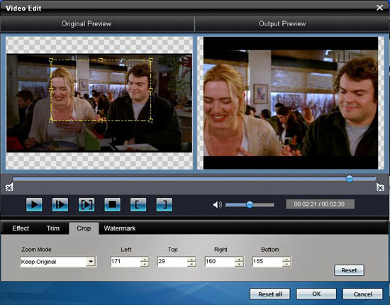 How to Rip DVD to Popular Video Formats Crop