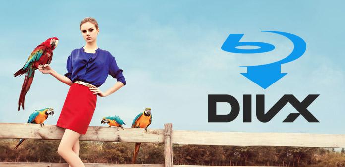 Zkopírujte domácí Blu-ray film do formátu DivX