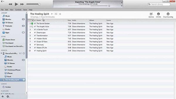 Overfør musikk med iTunes