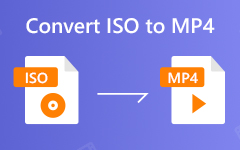 Converti iSO in MP4