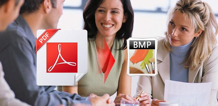 PDF BMP: lle