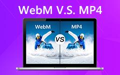WebM a MP4