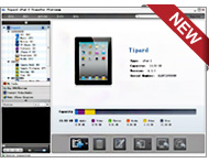 iPad 2 Transfer Platinum Screen