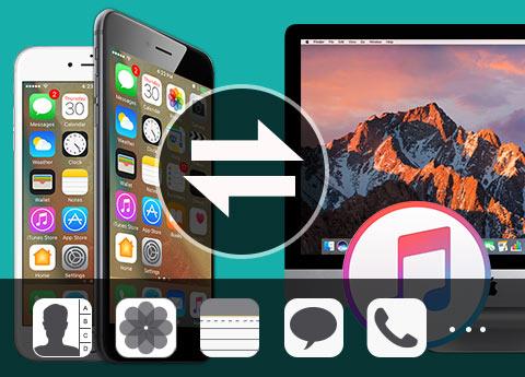 Överför filer till Mac
