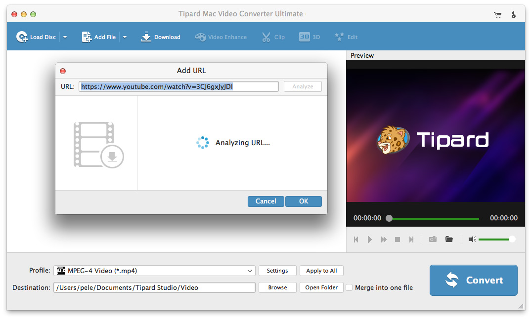 Convert YouTube to MP4 with YouTube to MP4 Converter