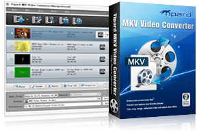 MKV Video Converter Screen