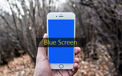 Исправить iPhone Blue Screen