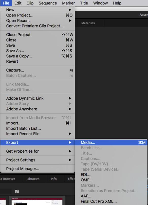 Adobe Premiere Share
