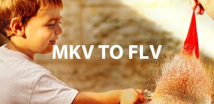 MKV to FLV