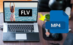 FLV to MP4 на Mac