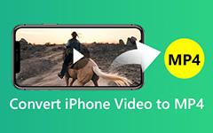 Převod iPhone MOV na MP4