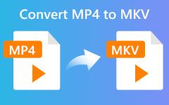 Converti MP4 in MKV