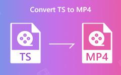 Konwertuj TS na MP4