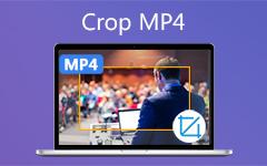 المحاصيل MP4 الفيديو