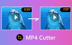 Konverter MPG til MP4