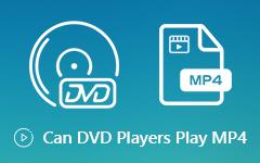 يمكن تشغيل مشغلات DVD MP4