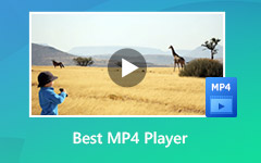 MP4 Player para Windows e Mac
