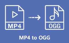 MP4 na OGG