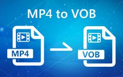 MP4 إلى VOB