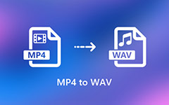 MP4 do WAV