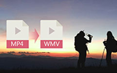 MP4 naar WMV Converter