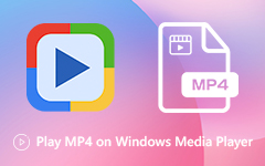 تشغيل MP4 في Windows Media Player