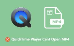 لا يستطيع لاعبو Quicktime فتح MP4