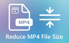 Pienennä MP4-videotiedostojen kokoa
