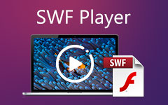 SWF Player