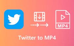 تحويل فيديو Twitter إلى MP4