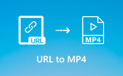 تحويل URL إلى MP4