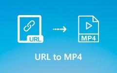 Convertir l'URL en MP4