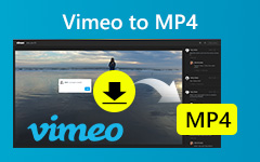Video Vimeo su MP4