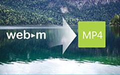 WebM naar MP4