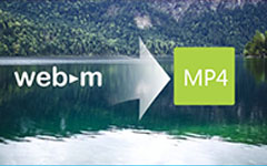 WebM til MP4