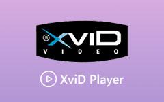 مشغل XviD