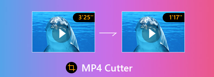 MP4 Kesici