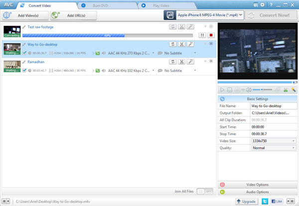 Enhver Video Converter