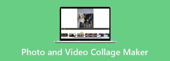 صانع ملصقات الصور والفيديو